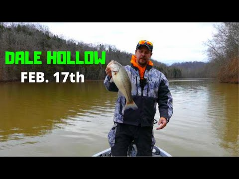Dale Hollow Lake Bass Fishing