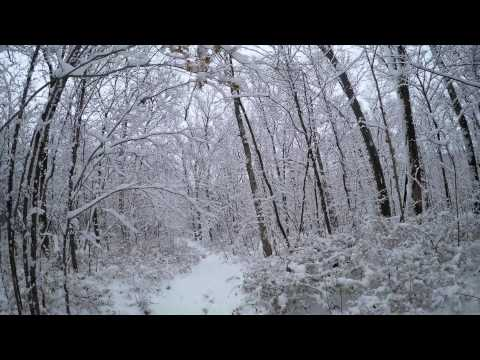 2-26-15 Huntsville, AL Hike in the Snow
