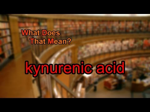 What does kynurenic acid mean?