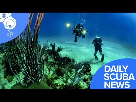 Daily Scuba News - Mentors Program Uses Scuba Diving To Keep On Track