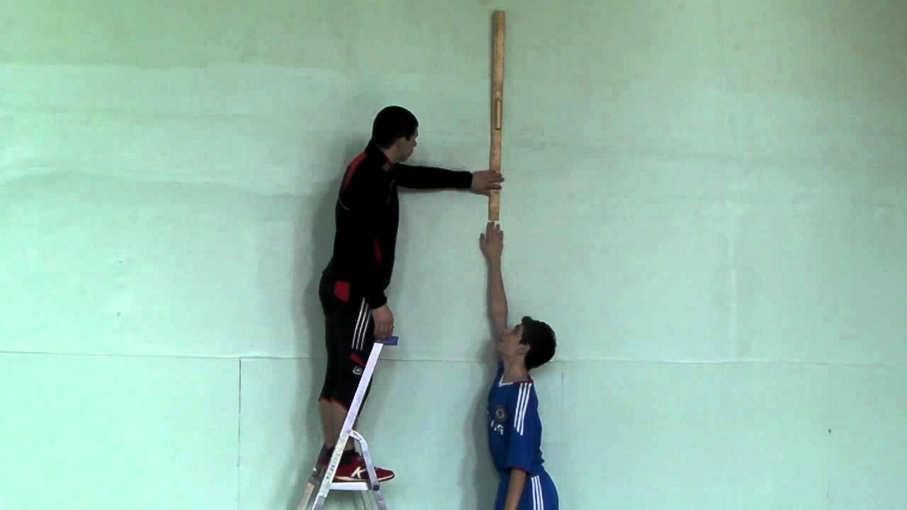 Прыжок в высоту с места рекорд мира