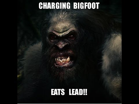 World Bigfoot Radio episode #12, Part 2 ~ Charging Bigfoot eats lead, Lynne Poole interview part 2