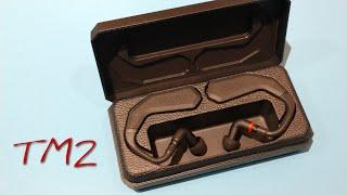 Fostex Tm2  (z Reviews)  True Wireless Audiophilia