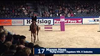 Paard flying Dream