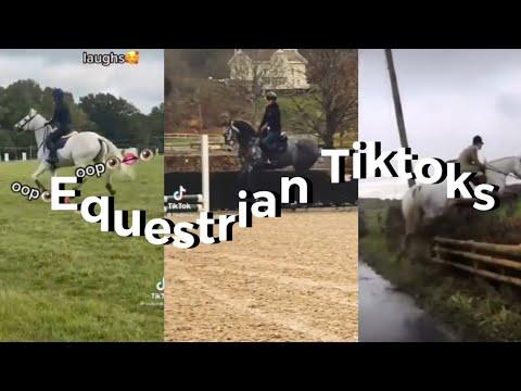Jumping TikToks Equestrian
