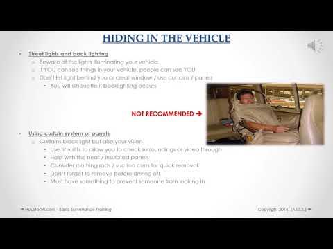 Private Investigator Houston   Spring PI   Houston Investigations