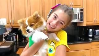 Nastya và Artem chuẩn bị bánh quy và đồ ngọt cho một chú chó con