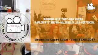 Grooming kreatywny oraz Papilon wystawowo - CO W GROOMINGU PISZCZY