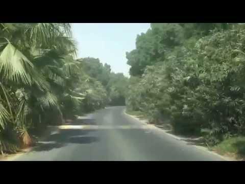 "Dubai Al Barari ""The Farm"" Drive - Secret Little Green Heaven & Tranquility Oasis"