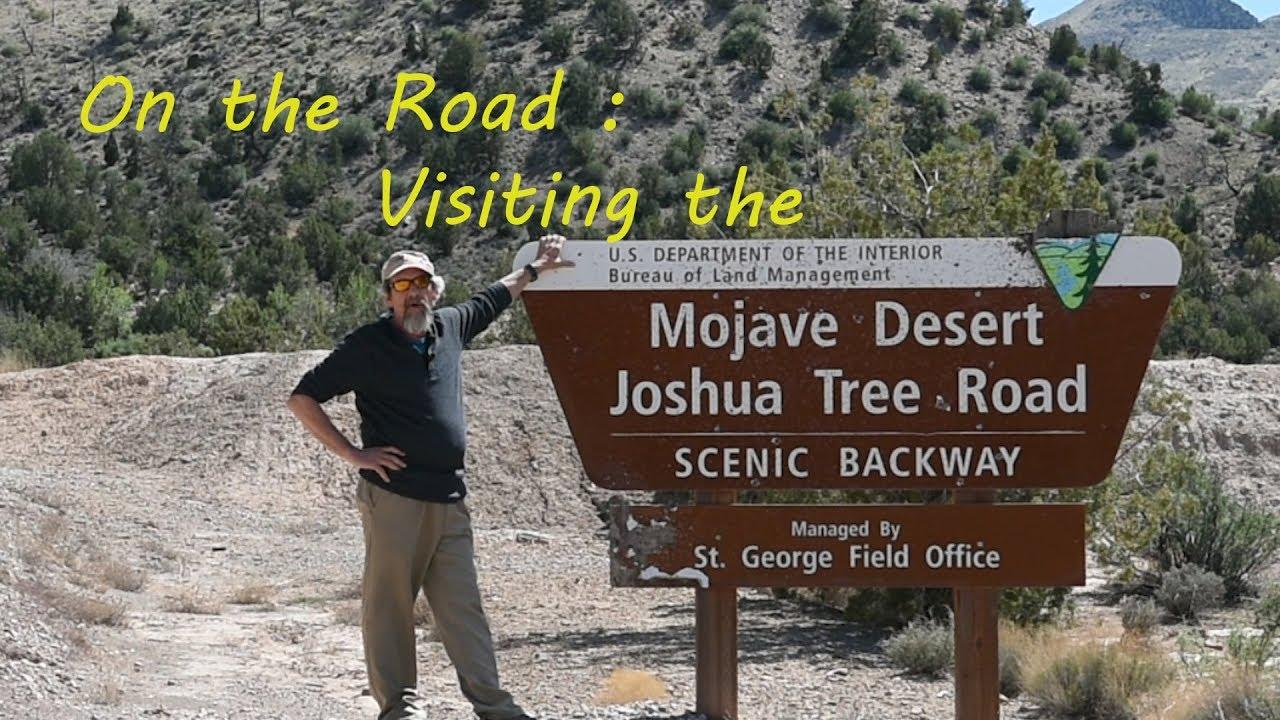 On The Road The Mojave Desert Joshua Tree Road Youtube