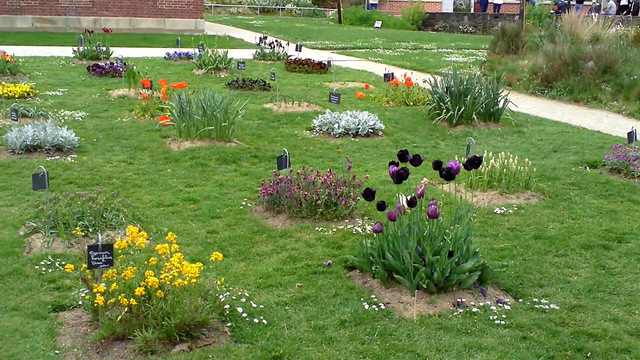 Le fleurs au jardin des Plantes (Nantes, France), 22 avril 2019