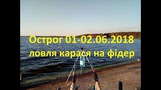Рибалка на фідер на Нетішинському водосховищі