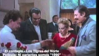 El contagio - Los Tigres del Norte