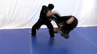 Hapkido Training Video Preview (Eagle Talon Hapkido)