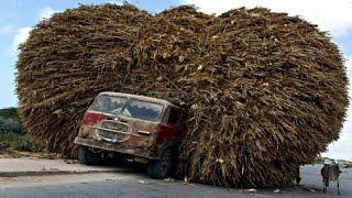Dangerous  Diots Fastest Biggest Truck Fails Driving - Heavy Equipment Machines Fails Working