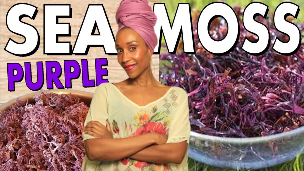 Purple Sea Moss Quick And Easy Sea Moss Gel And Sea Moss Water Tutorial Dr Sebi Detox Tools Youtube