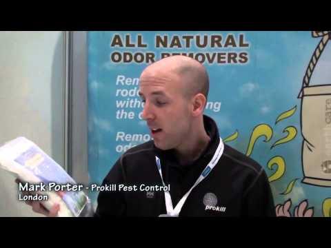 Decomposing Rat Odor - Pest Ex London