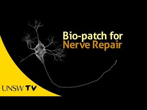 Bio-Patch for Nerve Repair