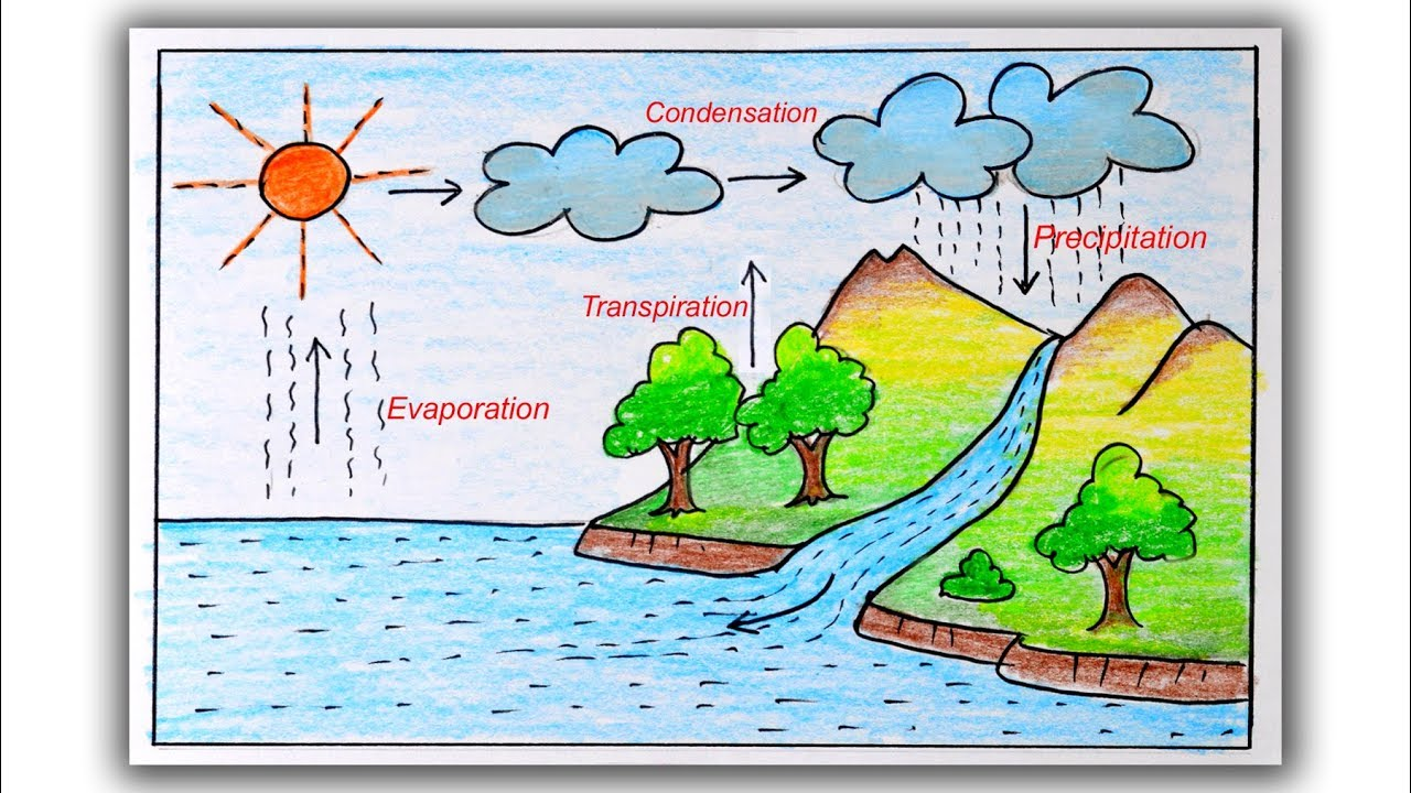 medium resolution of How to draw Water cycle step by step   Water cycle Drawing for students -  YouTube