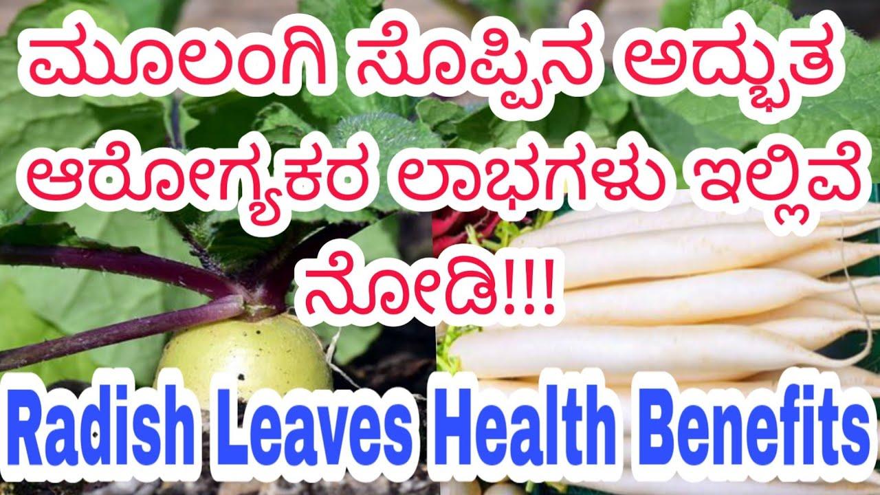 health benefits of radish leaves | radish in kannada | mullangi health  benefits in kannada