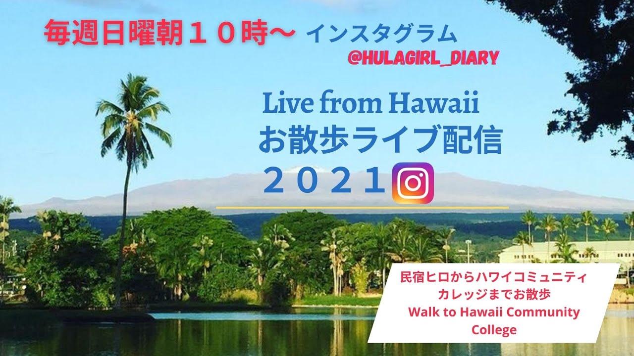 【6/12/2021 ハワイコミュニティカレッジへ】Live- Walk to Hawaii Community College
