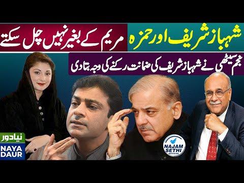 Shehbaz, Hamza Will Not Let PMLN Split For Establishment   Najam Sethi   Najam Sethi Official