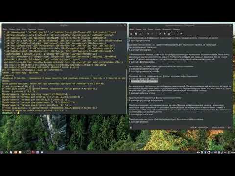 Удаление пакетов и очистка Linux от мусора