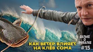 Как ветер влияет на клёв сома Где ловить сома Дальке о рыбалке 15