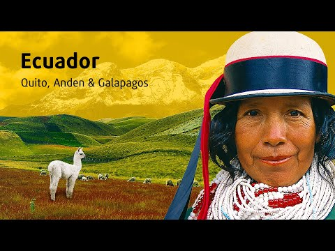 Ecuador »Quito, Anden & Galápagos«