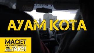 Download Video AYAM KOTA - Macam-macam Cerita Taksi MP3 3GP MP4