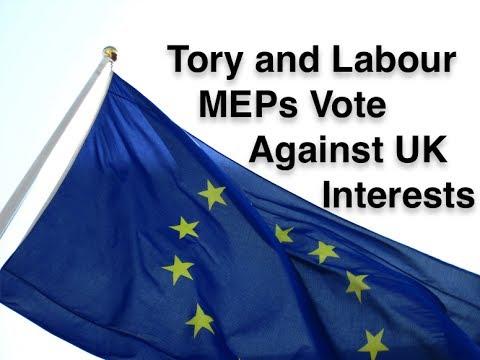 Tory and Labour MEPs Help Vote Down UKIP EU Withdrawal Amendments