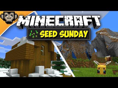 Minecraft 1.15 | Beautiful Sights Of Winter | Seed Sunday - Ep268 - (Java Edition)