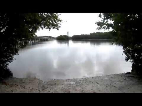 Good Fishing Spot In Bonita Springs, Florida  - Shoreline Fishing