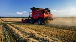 Żniwa 2018 / Harvest 2018 /Case Axial Flow 6130 6088 / John Deere 7830 7530 7430 - Spudłów 2018