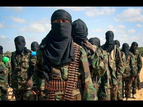 Confirmação da Profecia Terroristas em Moçambique thumbnail