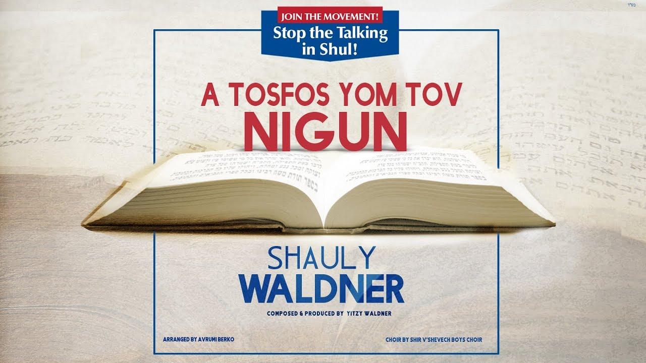 Shauly Waldner: The Tosfos Yom Tov Nigun - New Single