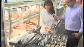 Vitamina D - JORNAL DA EPTV - Cristina Trovó