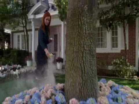 Desperate Housewives: Final Goodbye to Edie Britt Nicolette Sheridan