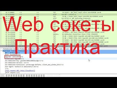 Web сокеты | Практика по компьютерным сетям