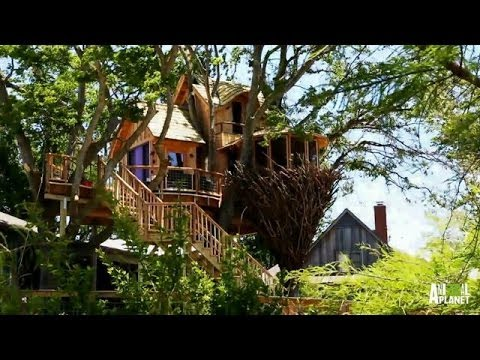 Behind The Build Bird Nest Tree Treehouse Masters Youtube