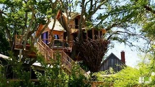 Behind the Build: Bird Nest Tree   Treehouse Masters