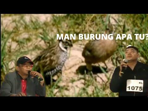 MAN BURUNG APA TU? - YouTube