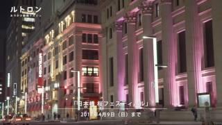 江戸桜通りや浜町緑道など桜の名所が多く、桜と縁深い街・日本橋では、4...
