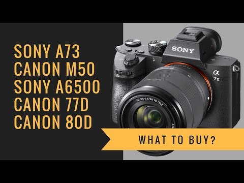 Sony a7 III vs Canon M50 vs Sony a6500 vs Canon 77D 80D - What to BUY?