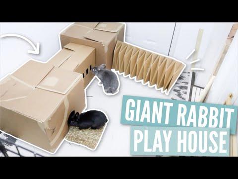 DIY Giant Rabbit Playhouse
