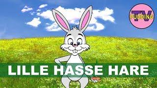 Lille Hasse Hare (har ei flue på sin nese)