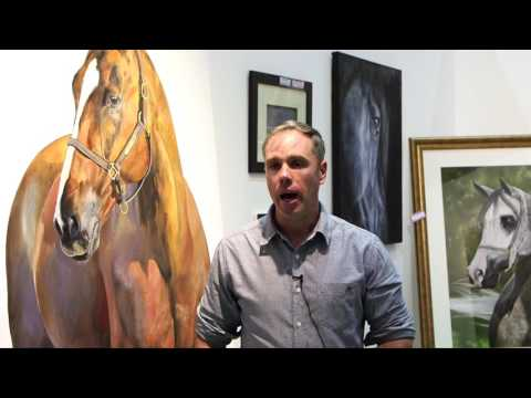 Dubai international horse fair 2017 Highlights