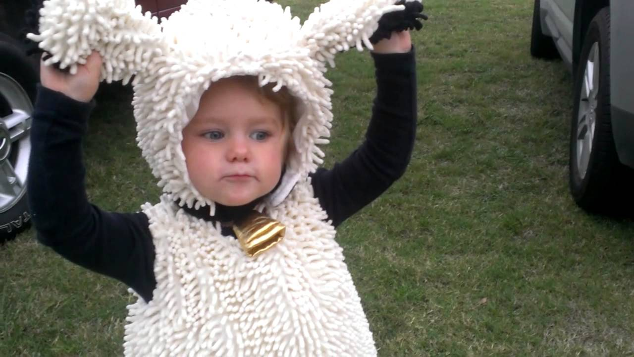 Girl In Sheep Costume Acting Like A Cat Youtube