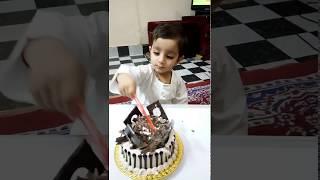 Baby's 2nd Birthday - Funny Cake Cutting