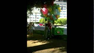old lady stuck in tree with balloons